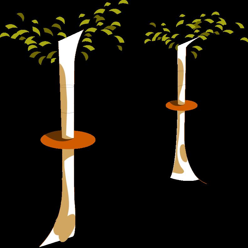 Puntea Maimutei  (cu obstacole triunghi din lemn )